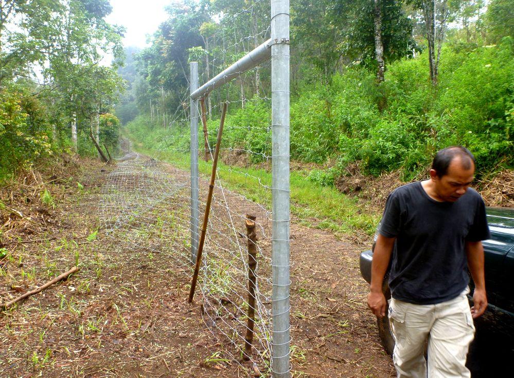 jaluran pagar